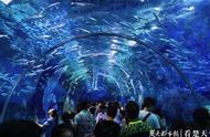 中秋小长假首日,武汉5个重点旅游景区接待游客20.1万人次