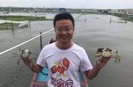 阳澄湖大闸蟹23日开捕 四两公蟹和三两母蟹预计90元一只