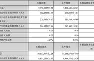 FPC市场份额提升,东山精密上半年净利增长55%