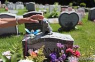 从事宠物殡葬业需要哪些证件?