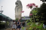 新加坡圣淘沙鱼尾狮将被拆,被称为标志性建筑、已屹立24年