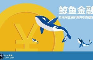 鲸鱼理财:互联网金融迎来黄金时代