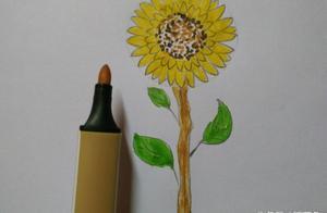 幼儿简笔画教学 巧用3个圆圈画向日葵 原来画画这么简单呢