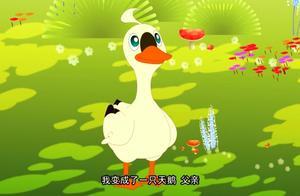 儿童睡前故事   童话故事——六只天鹅(上)
