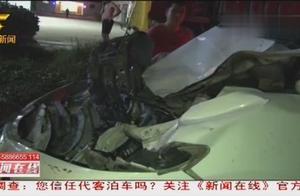乡村道路不减速,小车撞死四头黄牛,所幸无人员伤亡