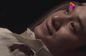 雪豹:卫国手臂受伤感染,朱大哥忍痛把它砍断,这一段看哭了!