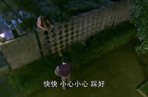总裁送灰姑娘回学校,趁总裁不注意,灰姑娘直接翻墙进去!