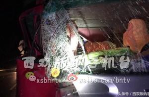 西双版纳:野象与车辆相撞致使一人受伤