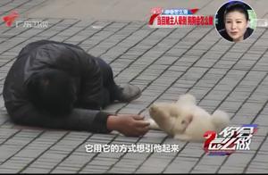 主人突然晕倒路边,狗狗寸步不离守护主人,不准任何人靠近!