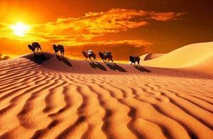 描写沙漠的文章