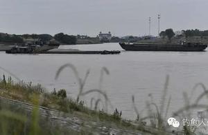 运河90分钟搏斗2米巨鱼