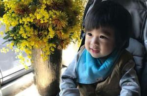 陈若仪晒双胞胎儿子近照,老三没擦嘴巴就出镜,却被赞最美萌!