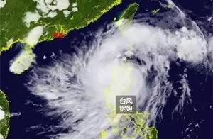 关于台风妮妲,你不知道的都在这了!