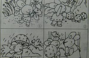 二年级看图写话小兔子