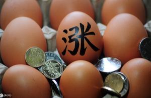 鸡蛋价格为什么会涨?因为它?