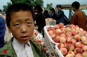 公务员面试题:网传蜜桃打了防腐剂,桃农损失严重,你怎么做?