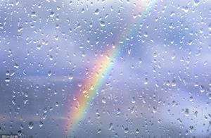 作文《我们在风雨中成长》