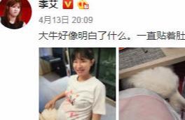 李艾晒孕期美照,宠物狗大牛一直贴着她肚子,网友:提前联络感情