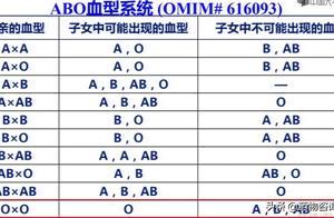 夫妻双方都为O型血,可以生出A型或者B型的小孩吗?
