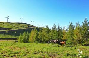 夏季避暑好地方,这里距离北京3h,有美丽的坝上草原风光