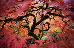 摄影采撷:美丽的自然风光作品欣赏