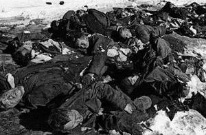 二战真实伤亡人数,苏联2980万中国1800万,日本是多少?