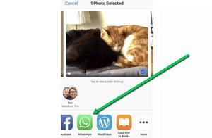 WhatsApp为iOS版加入的Face ID解锁新功能出现漏洞!
