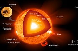 恒星转换过程中有哪些行为,为何在白矮星阶段的存活很重要?