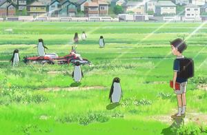 扔出一罐可乐就会变出一只企鹅,《企鹅公路》充满奇思妙想