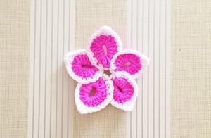 这是五个花瓣连接起来的双色花朵,很神奇的是居然中间不用断线