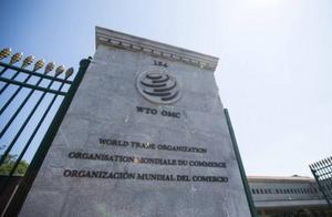 欧洲印度向WTO提交对美报复清单,一个月内生效