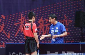 张本智和父亲是樊振东许昕师兄 国乒名帅谈他与小山智丽最大不同