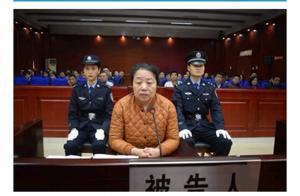 安徽一女厅官受审,5处房产被查封
