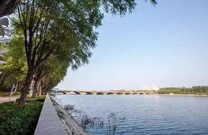 烟台有六大湿地公园,你去过哪一个?