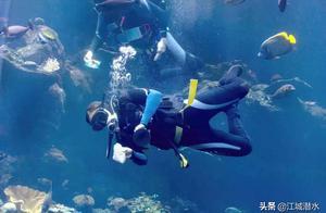 关于潜水的疑问那么多,能一下子解决么?
