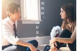 狗生很短人生很长,向往中的男友就是《一条狗的使命2》刘宪华了