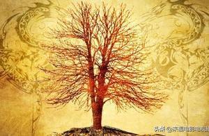解密秦岭神树,一场针对吴邪的骗局