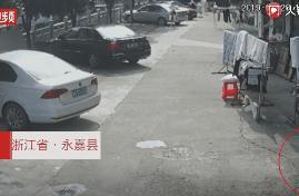 """浙江10岁女孩打开家门:25000元""""钞票雨""""从天而降!真相哭笑不得"""