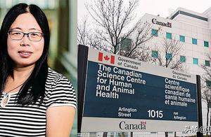 加拿大对华裔病毒学家下手 加国顶级科学家:不要将科学政治化