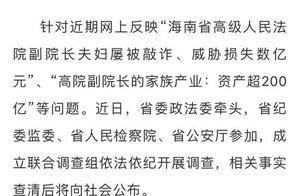 海南高院副院长被举报资产超200亿,四名举报人说了什么?