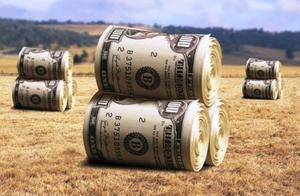 美国498个农场破产,美国农民收入或暴跌50%,但事情远不止于此