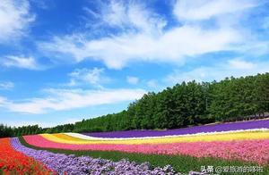 夏天来了,又想去北海道了....