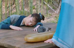 封神演义:小娥的真实身份是哮天犬?还有一种可能是五行将之一