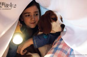 阿里影业联合出品《一条狗的使命2》!钢琴王子刘宪华暖心出演