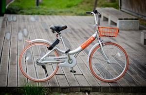张维迎:我不轻易宣布共享单车已经死亡