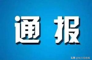 岳阳这些学校及教育培训机构,被要求整改、停招或注销!