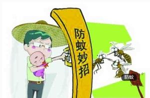 不用蚊香不用药,蚊帐也不用,做好这几点,房间里一只蚊子都没有