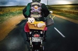 关于五月天《摩托车日记》的问题