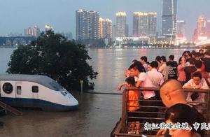 Hunan river individual plant continent Duan Ying c