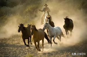新商业股独领风骚,如何骑上科技新世界的马背?